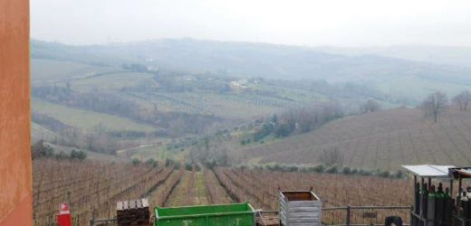 Uscita a San Patrignano