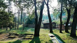 Gita all'Eco Parco di Vezzano