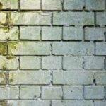 I diversi muri del mondo